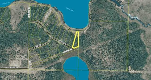 L14 Burbot Drive, Soldotna, AK 99669 (MLS #20-5958) :: RMG Real Estate Network | Keller Williams Realty Alaska Group