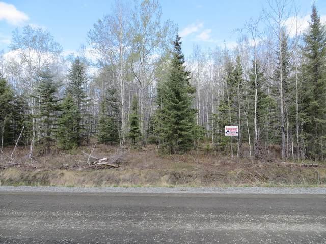 L6 B1 Heistand Avenue, Soldotna, AK 99669 (MLS #20-6151) :: Wolf Real Estate Professionals