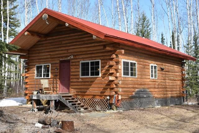 L7 B3 Kiglowa Drive, Nenana, AK 99760 (MLS #20-6371) :: Wolf Real Estate Professionals