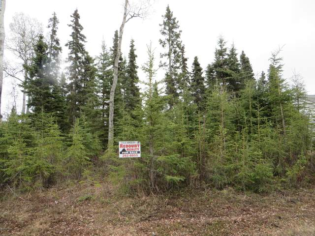 1105 Leeward Drive, Kenai, AK 99611 (MLS #20-6430) :: Wolf Real Estate Professionals