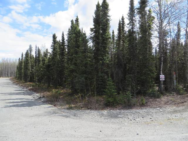 L1 Nerka Court, Soldotna, AK 99669 (MLS #20-6437) :: Wolf Real Estate Professionals
