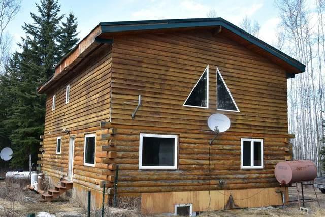 L8 B3 Kiglowa Drive, Nenana, AK 99760 (MLS #20-6552) :: Wolf Real Estate Professionals