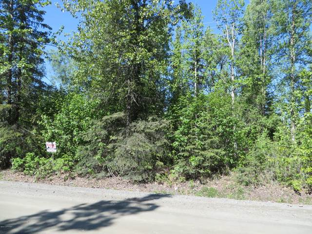 L3 B1 Reflection Lake Road, Soldotna, AK 99669 (MLS #20-6919) :: Powered By Lymburner Realty