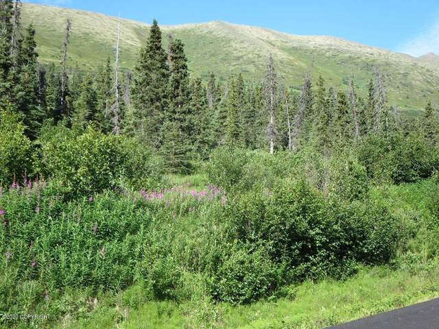 L1B1 West River Drive, Eagle River, AK 99577 (MLS #20-7195) :: Wolf Real Estate Professionals