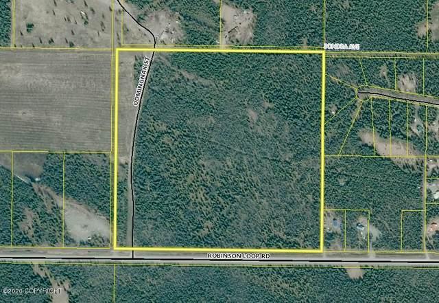 37450 Robinson Loop Road, Sterling, AK 99672 (MLS #20-7487) :: RMG Real Estate Network   Keller Williams Realty Alaska Group