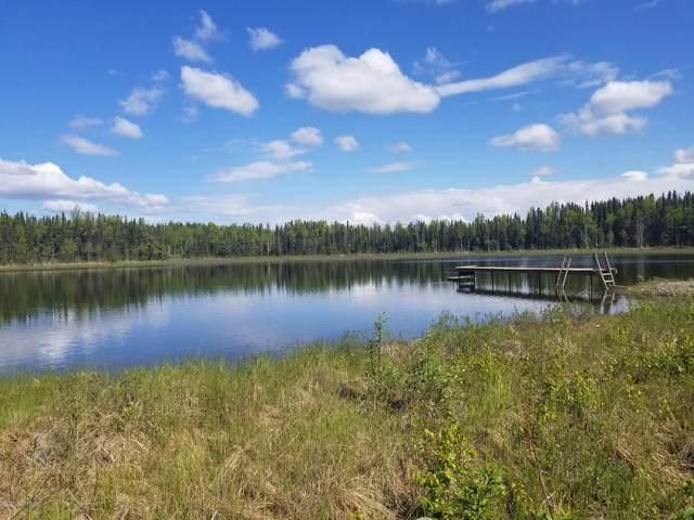 12306 Burma Road, Big Lake, AK 99654 (MLS #20-7998) :: RMG Real Estate Network | Keller Williams Realty Alaska Group