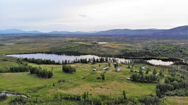 L1-2 Eden Lake, Manley Hot Springs, AK 99756 (MLS #20-9082) :: Team Dimmick
