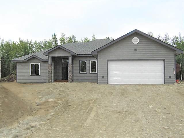 L16 BE Moon Glow Road, Delta Junction, AK 99737 (MLS #20-9096) :: RMG Real Estate Network | Keller Williams Realty Alaska Group