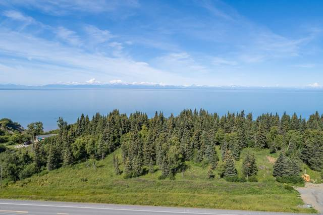 67360 Sterling Highway, Clam Gulch, AK 99568 (MLS #20-9375) :: Team Dimmick