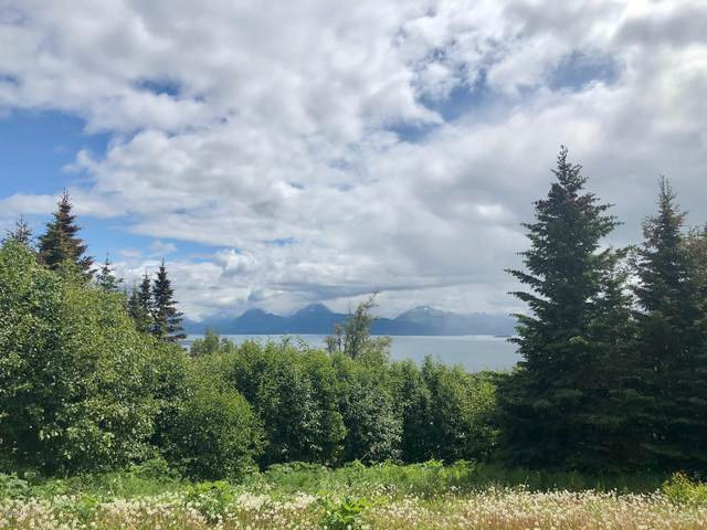 509 Fireweed Avenue, Homer, AK 99603 (MLS #20-9473) :: The Adrian Jaime Group | Keller Williams Realty Alaska