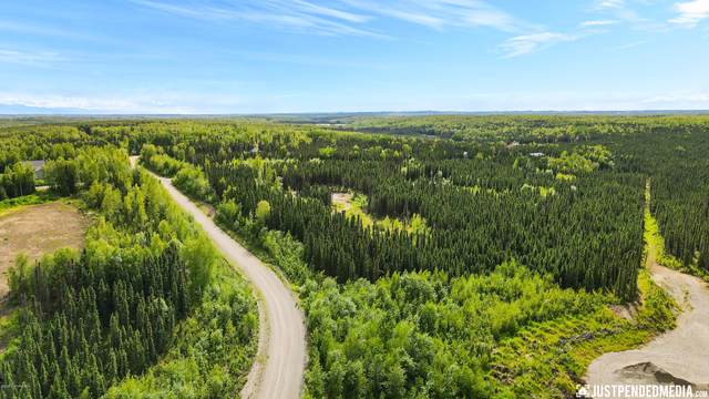 4176 N Three Bees, Wasilla, AK 99623 (MLS #20-9535) :: Wolf Real Estate Professionals