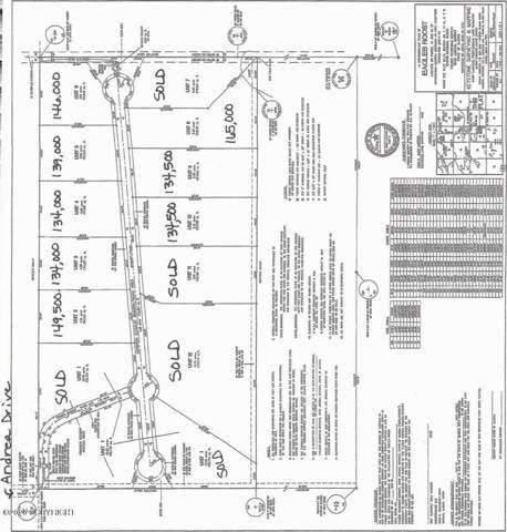 9836 W Aircraft Court, Wasilla, AK 99623 (MLS #20-973) :: Wolf Real Estate Professionals