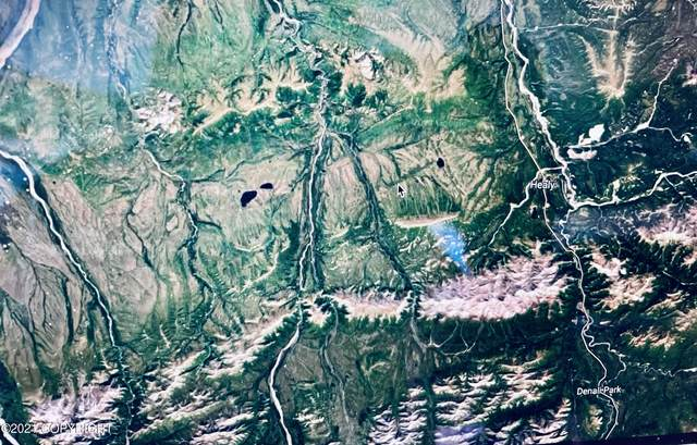 TR E Alaska State Land Survey 69-6, Healy, AK 99743 (MLS #21-10957) :: Wolf Real Estate Professionals