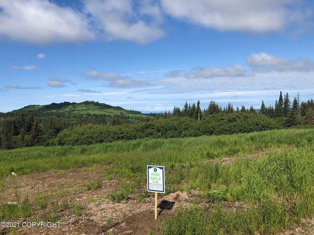 000 Mossberg Drive, Homer, AK 99603 (MLS #21-11255) :: Wolf Real Estate Professionals