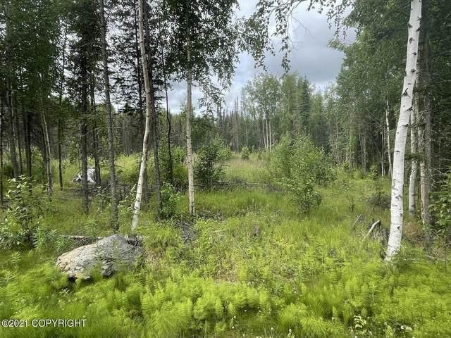 1840 S Elizabeth Drive, Wasilla, AK 99654 (MLS #21-11578) :: Wolf Real Estate Professionals
