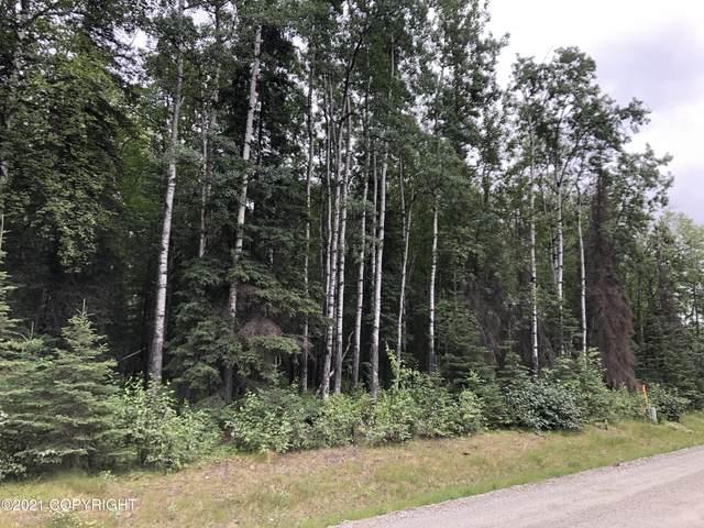 5551 N Wildwood Drive, Wasilla, AK 99654 (MLS #21-12059) :: Team Dimmick