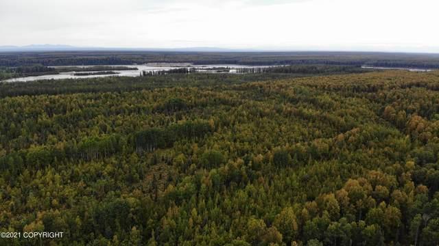 000 No Road, Talkeetna, AK 99676 (MLS #21-13802) :: Daves Alaska Homes
