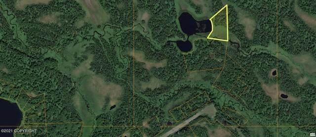 No Road Asls 94-083, Remote, AK 99000 (MLS #21-15586) :: Wolf Real Estate Professionals