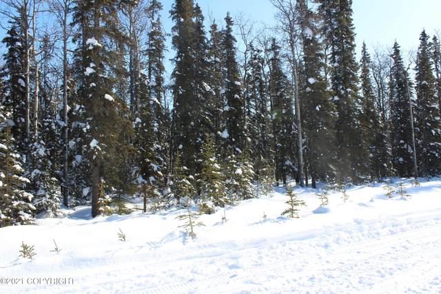 Tr 59 Tustumena Terraces Sub, Kasilof, AK 99610 (MLS #21-3261) :: RMG Real Estate Network | Keller Williams Realty Alaska Group