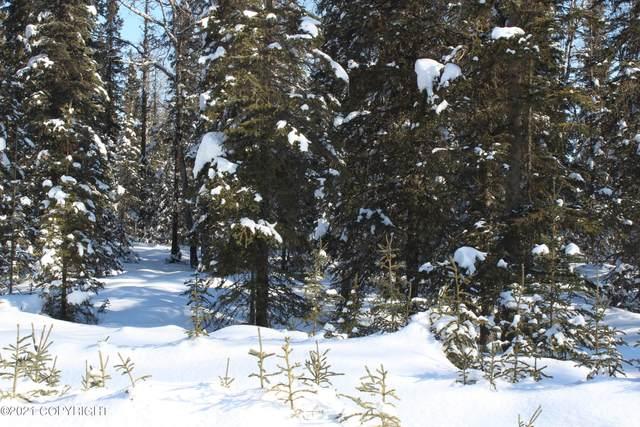 Tr 60 Tustumena Terraces Sub, Kasilof, AK 99610 (MLS #21-3263) :: RMG Real Estate Network | Keller Williams Realty Alaska Group