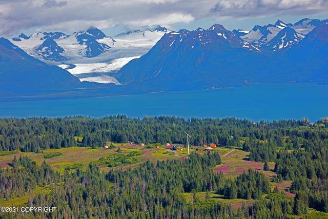 61420 Florence Martin Court, Homer, AK 99603 (MLS #21-3544) :: Wolf Real Estate Professionals