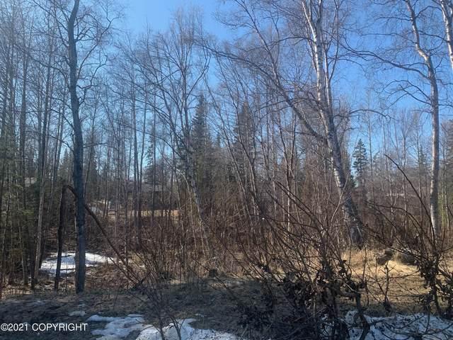 L19B Telequana Drive, Anchorage, AK 99517 (MLS #21-3827) :: Wolf Real Estate Professionals