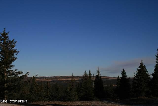 L2 Mossberry, Homer, AK 99603 (MLS #21-3861) :: RMG Real Estate Network | Keller Williams Realty Alaska Group