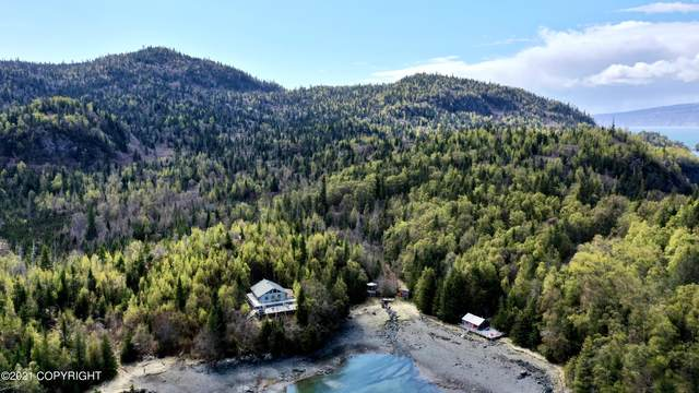 000 Bear Cove, Remote, AK 99603 (MLS #21-3896) :: Wolf Real Estate Professionals