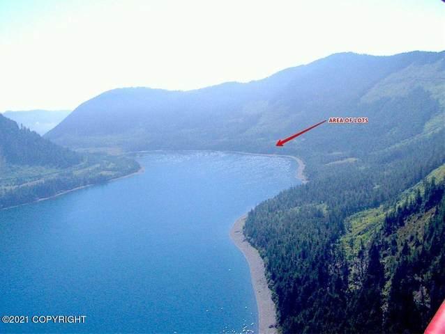 L103 Two Moon Bay, Tatitlek, AK 99677 (MLS #21-4651) :: Wolf Real Estate Professionals