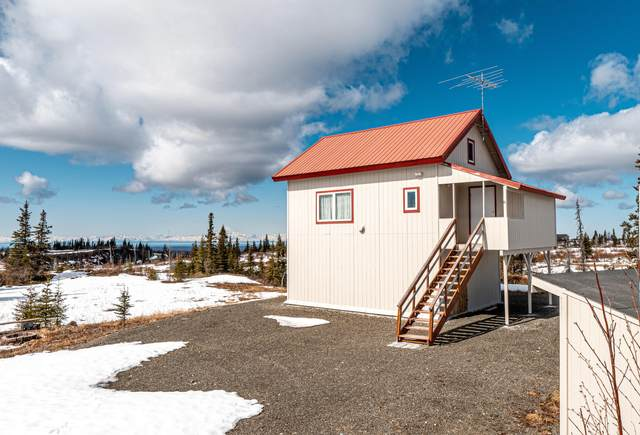 54245 Alexandria Avenue, Ninilchik, AK 99639 (MLS #21-4825) :: Wolf Real Estate Professionals