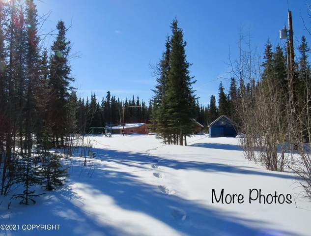 56 Sundog Trail, Tok, AK 99780 (MLS #21-4976) :: Team Dimmick