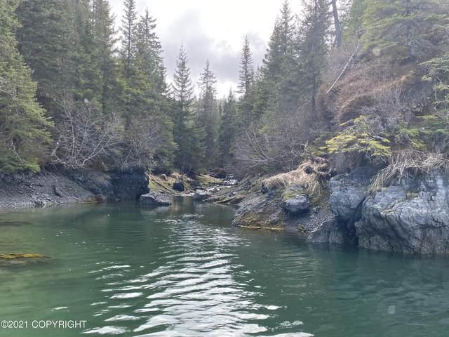 1-B Broken Axle, Halibut Cove, AK 99603 (MLS #21-5371) :: Wolf Real Estate Professionals