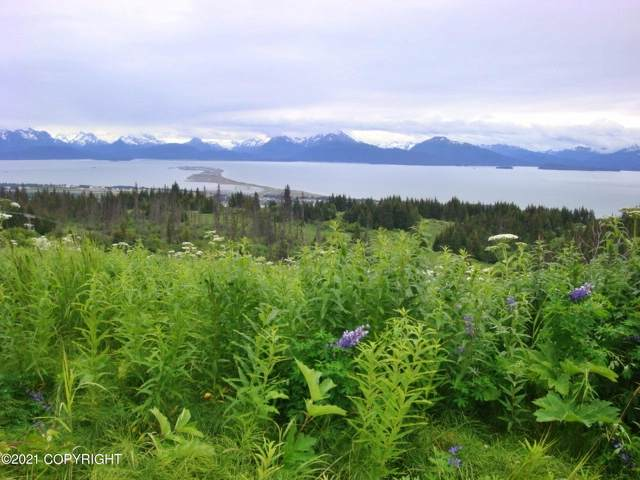 5027 Pine Terrace Circle, Homer, AK 99603 (MLS #21-5631) :: Daves Alaska Homes
