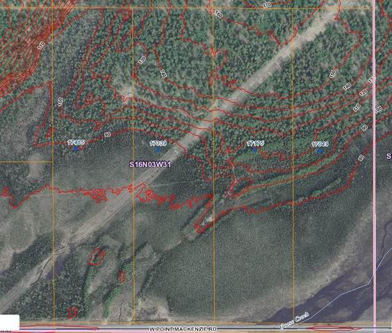 17175 W Point Mackenzie Road, Wasilla, AK 99654 (MLS #21-5838) :: Wolf Real Estate Professionals