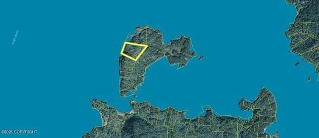 L6 Bear Island, Remote, AK 99603 (MLS #21-6188) :: Wolf Real Estate Professionals
