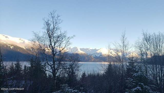 L9 Haven Court, Haines, AK 99827 (MLS #21-714) :: Wolf Real Estate Professionals