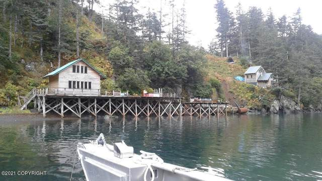 55790 Sadie Cove Rem Sw, Homer, AK 99603 (MLS #21-7678) :: Wolf Real Estate Professionals