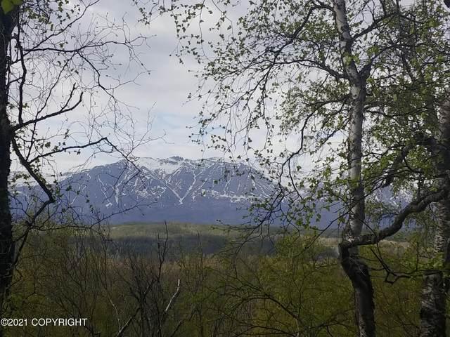 5554 Curt Circle, Palmer, AK 99645 (MLS #21-8333) :: Alaska Realty Experts