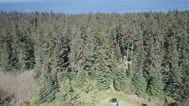 1640 Nutbeem Road, Seldovia, AK 99663 (MLS #21-8363) :: Wolf Real Estate Professionals