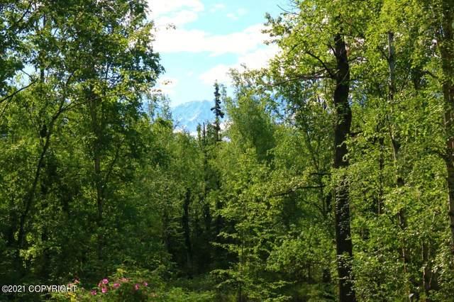 13630 E Kings River Drive, Sutton, AK 99674 (MLS #21-852) :: RMG Real Estate Network | Keller Williams Realty Alaska Group