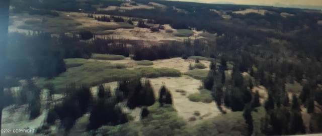 000 Ohlson Mtn. Road, Homer, AK 99603 (MLS #21-8781) :: Daves Alaska Homes