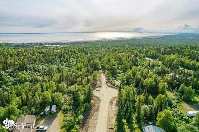 L2 Snow Flake Circle, Anchorage, AK 99516 (MLS #21-9187) :: Wolf Real Estate Professionals