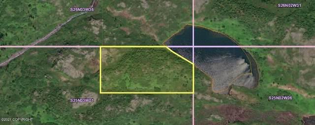 Tr A No Road Unnamed Lake, Talkeetna, AK 99676 (MLS #21-9278) :: Team Dimmick
