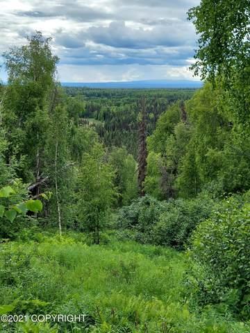 39757 S Malaspina Loop, Talkeetna, AK 99676 (MLS #21-9623) :: Daves Alaska Homes