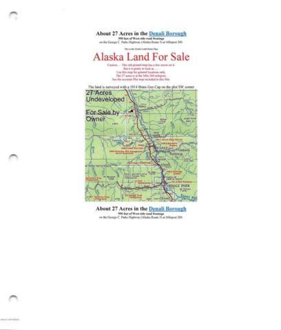 Mi 260 Parks Highway, Denali National Park, AK 99000 (MLS #17-14624) :: Channer Realty Group