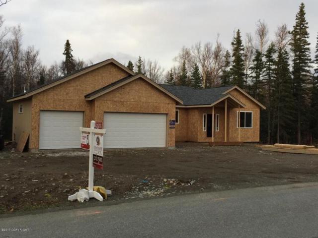 9080 E Susitna Drive, Wasilla, AK 99654 (MLS #17-15109) :: Channer Realty Group
