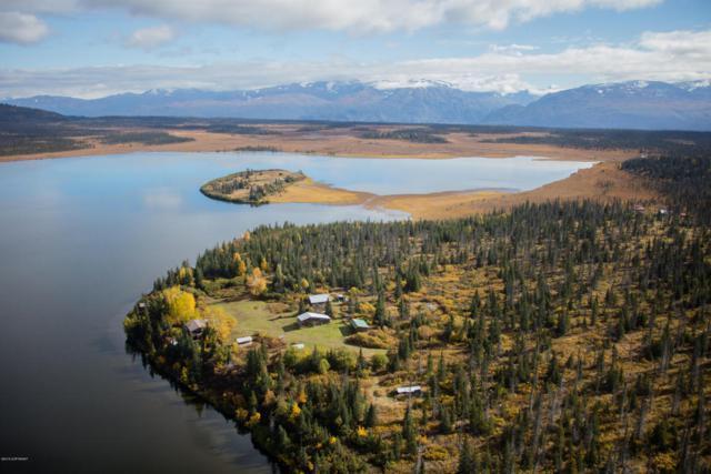 44827 Caribou Lake Rem, Homer, AK 99603 (MLS #17-18650) :: Team Dimmick