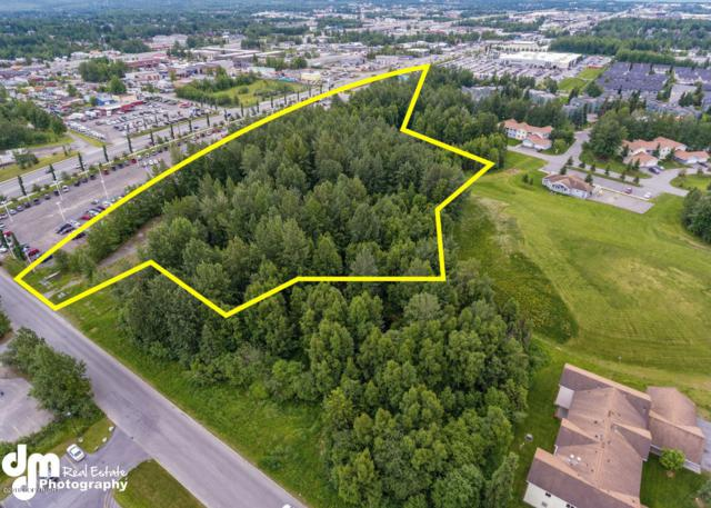 Tr E4 The Woodlands, Anchorage, AK 99518 (MLS #18-10868) :: Roy Briley Real Estate Group
