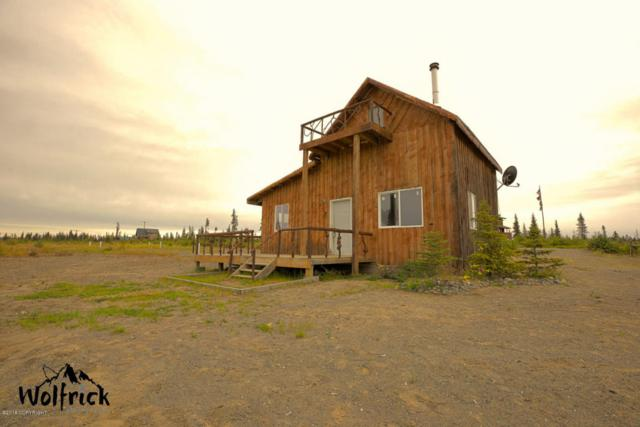 26991 Rowen Street, Anchor Point, AK 99556 (MLS #18-13897) :: Channer Realty Group