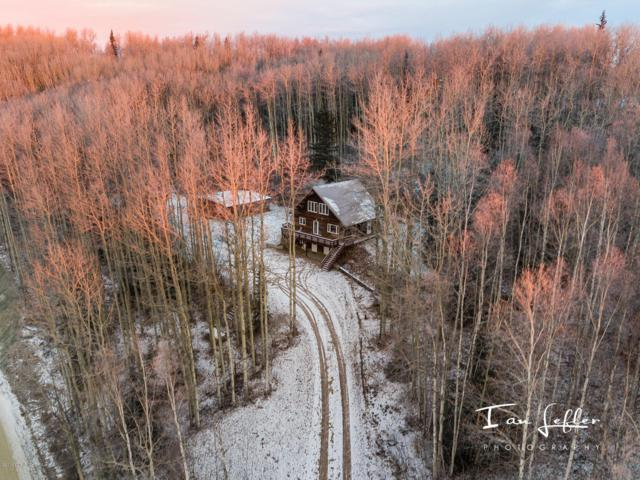 L2 Krogstie Lane, Fairbanks, AK 99709 (MLS #18-15361) :: RMG Real Estate Network | Keller Williams Realty Alaska Group